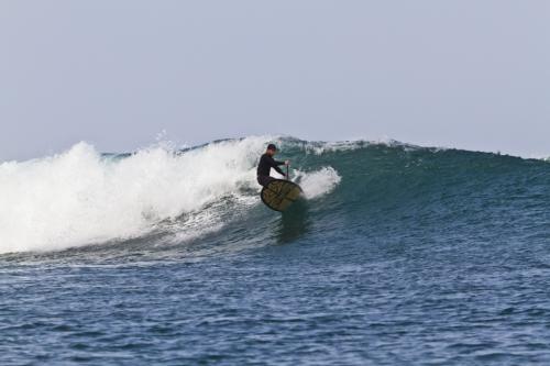 "Nose Rider 10'3"" - 14998_nr103surf-1446446123"