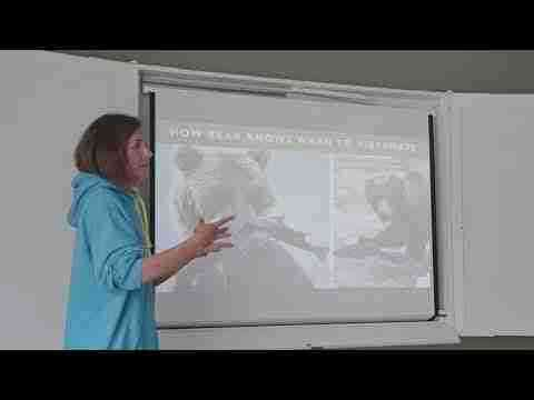 Katya: DFF talk - Why vegans fall off the diet